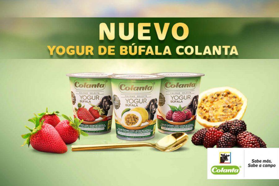 Colanta – Yogur Búfala